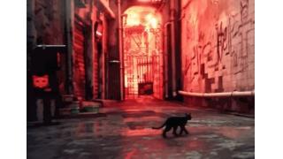 実写レベルで再現された香港の街を黒猫になって歩きまわる 海外アーティストが製作中のADVゲーム「HK」がすごい