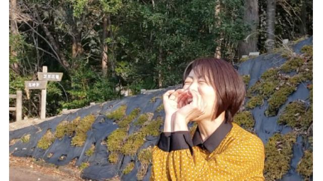 早川亜希動画#688≪【叫べ!】はやかわ散歩和歌山観光編≫※会員限定※