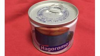 【缶これ】賞味期限が10年過ぎたサバの缶詰