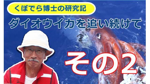 窪寺博士のダイオウイカ研究記-その2