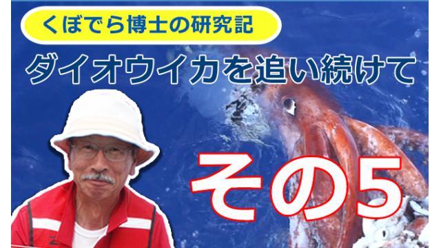 窪寺博士のダイオウイカ研究記-その5