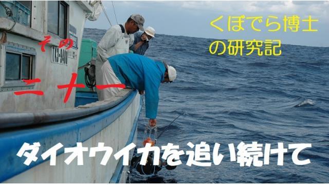 窪寺博士のダイオウイカ研究記-その21