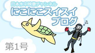 祝! 日本水中映像チャンネル開設! |2015年8月3日