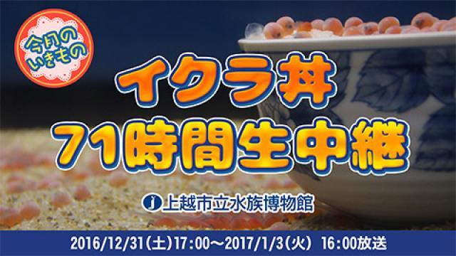 【記録】イクラ丼71時間生放送