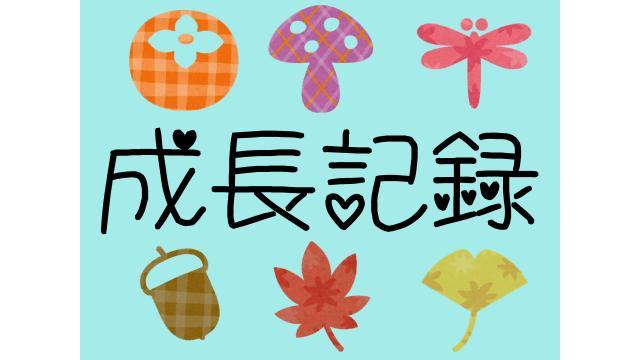 【シイタケさん100時間観察】きのこさん成長日記