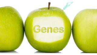 一人ひとりにダイエット法をオーダーメイド?米国で始まりそうな遺伝子検査ダイエット