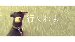 ぴの耳より情報 (6/30) 「ぴ散歩2」と「蜜の味」登場!