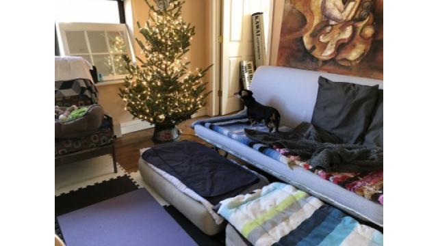 クリスマスツリーやっとここまで。