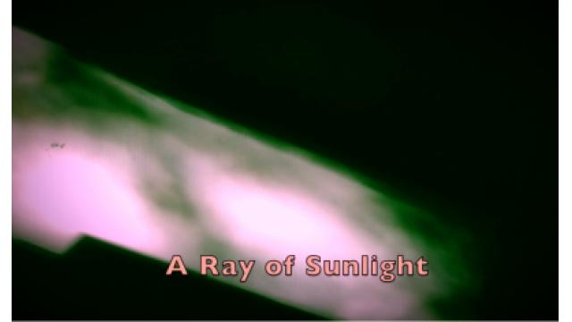 """A Ray of Sunlight"""
