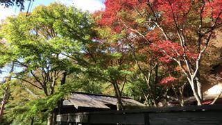 【大人の隠れ家】兵庫の山中にある土日祝限定オープンの隠れ家カフェ「はなれ家」を紹介!