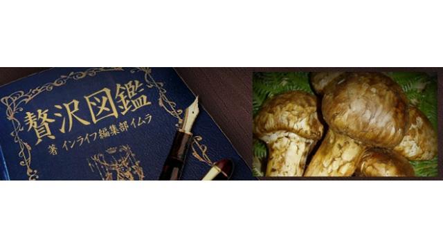 """贅沢図鑑:最高級の国産マツタケとうたわれる""""京都 丹波""""のマツタケを紹介!"""