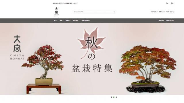 オンラインストア『大宮盆栽ストア』登場!高級盆栽がネットで買える!
