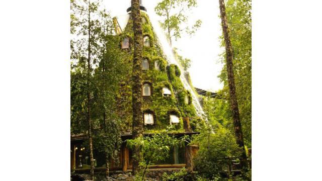 【大人の隠れ家】チリにある植物に覆われた滝が流れるホテル「モンタナ マジカ ロッジ」を紹介!