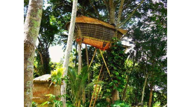 【大人の隠れ家】バリ島の自然溢れる隠れ家ホテル「バンブーインダー」を紹介!