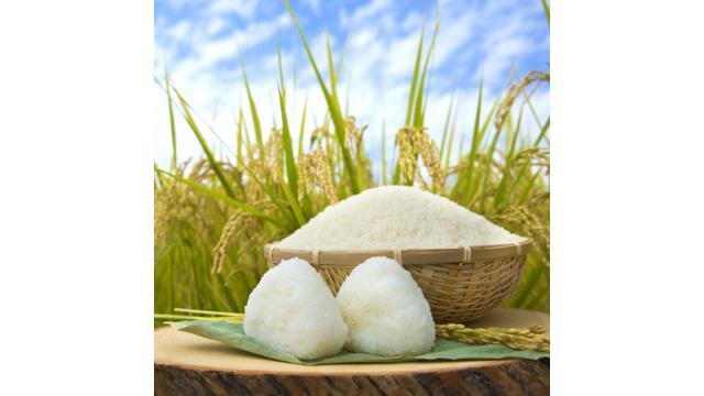 【贅沢図鑑】日本の心であり主食の「最高級米」を紹介!