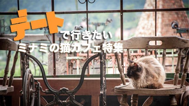 デートで連れて行きたい!大阪・ミナミの猫カフェ特集!