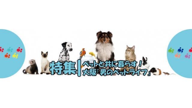 ペットと共に暮らす!大阪『男のペットライフ』特集