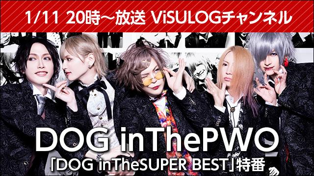 1月11日(金)20時より『DOG inTheパラレルワールドオーケストラ「DOG inTheSUPER BEST」特番』放送決定!