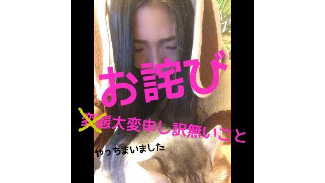 お詫び……(TT)