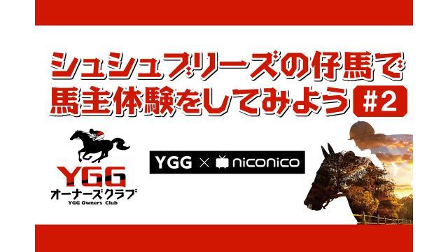 5/23(土)20:00~ シュシュブリーズの仔馬で馬主体験をしてみよう#2【YGG×niconico】
