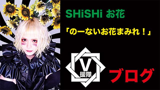 SHiSHi お花 ブログ 第一回「のーないお花まみれ!」