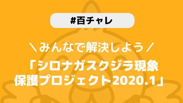 【百チャレ】シロナガスクジラ現象保護プロジェクト2020.1が1月23日からスタートします