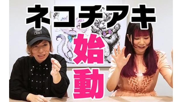 【祝】digmeout ch. 開設!『猫将軍×チアキコハラ』=ネコチアキ始動!!