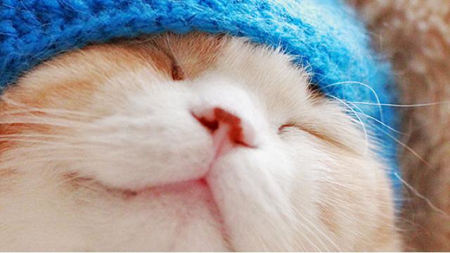 【特別寄稿】稲田豊史『ドラえもん』と四十路男の15年 〜THE ドラえもん展に想う〜