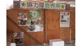 【結城登美雄の食の歳時記#18】村へ向かう「緑のふるさと協力隊」の若者たち(農山村と若者編・その3)