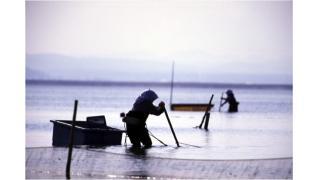 【結城登美雄の食の歳時記#28】海と川とシジミ漁(川の恵み編・その4)