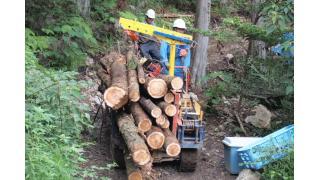【イベント案内 3/4〜5】林業界で注目の「自伐型林業」──高野孟の地元 鴨川市で始めてみましょう