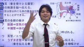 早川が教える。理科は敵ナシ!定期テスト攻略法!|アオイゼミ