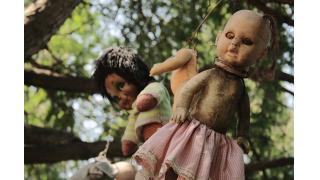 無数に吊るされたドールの理由は一体...? メキシコの「人形の島」から漂う怨念