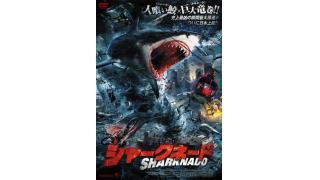 海のホラーサメ映画「シャークネード2」人喰い鮫200%増量して日本初公開