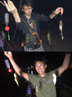 ぬこまた釣査団