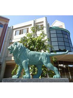 日本体育大学柏高等学校