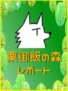 栗御飯の森レポート