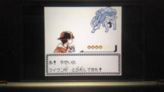 ポケモン金銀徘徊スイクン色違い出ました!!!