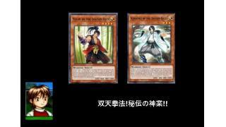 双天拳法、秘伝の神業!
