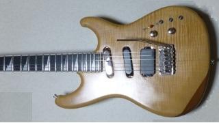 プロの現場から流出した本物のギターw