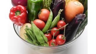 野菜は新鮮なほうがいい 料理科学の森