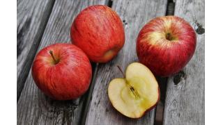果物・野菜の褐変 料理科学の森