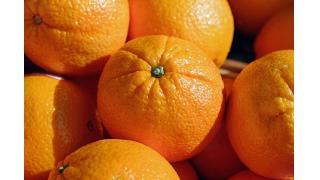 食器用洗剤で野菜や果物を洗う 料理科学の森