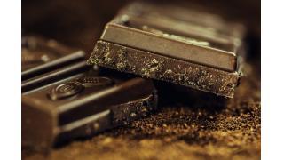 犬にチョコレートを食べさせてはいけない 料理科学の森