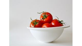 トマトの保存方法 料理科学の森