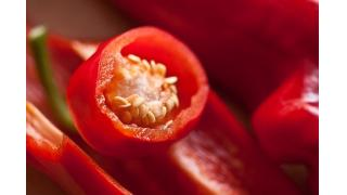 唐辛子の種は辛い? 料理科学の森