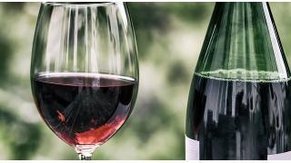 ワイン鑑定人(ソムリエ)と一般人の違い 料理科学の森