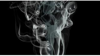 嗅覚における男女差 料理科学の森