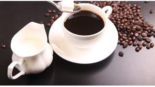 コーヒカップと色 料理科学の森