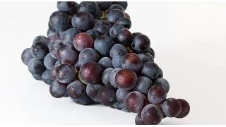 ぶどうジュースの色替え 料理科学の森